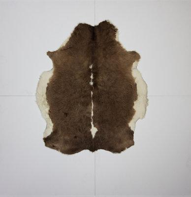 KOELAP Stierenhuid Vloerkleed - Bruinwit Gevlekt - 150 x 170 cm - 1000892