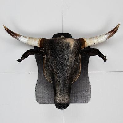 KOELAP Koeienkop - Zwart Egaal Koeienkop - 105 x 75 cm - 1000900