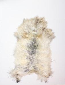 SCHAAPLAP IJslandse Schapenvacht  - Multicolor - 75 x 110 cm - 1003123