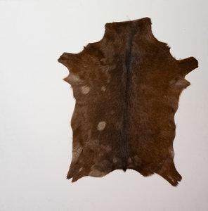 KOELAP Geitenhuid Vloerkleed - Bruin Egaal - 75 x 100 cm - 1002697