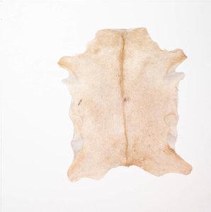 KOELAP Geitenhuid - Bruin Egaal Geitenhuid - 80 x 85 cm - 1003900