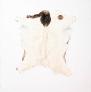 KOELAP Geitenhuid - Bruin Egaal Geitenhuid - 80 x 85 cm - 1003755
